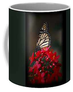 Coffee Mug featuring the photograph Butterfly 6 by Leticia Latocki