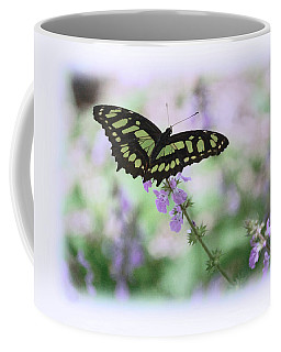 Coffee Mug featuring the photograph Butterfly 8 by Leticia Latocki