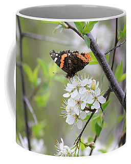 Coffee Mug featuring the photograph Butterfly And Apple Blossoms by Penny Meyers