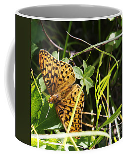Coffee Mug featuring the photograph Butterfly At Signal Mountain by Belinda Greb