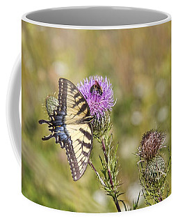 Coffee Mug featuring the photograph Butterfly by Daniel Sheldon