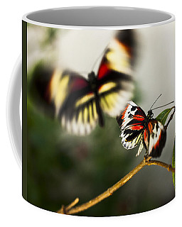 Butterfly In Flight Coffee Mug by Bradley R Youngberg
