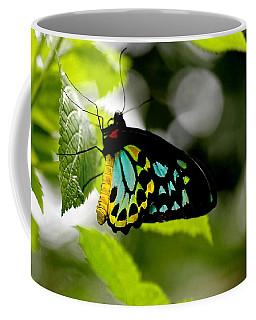 Butterfly Iv Coffee Mug by Tom Prendergast
