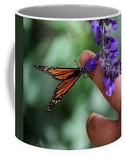 Coffee Mug featuring the photograph Butterfly by Leticia Latocki