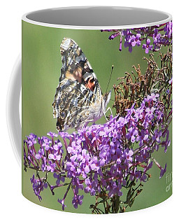 Coffee Mug featuring the photograph Painted Lady Butterfly by Eunice Miller