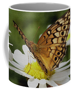 Butterfly On Daisy Coffee Mug by James C Thomas