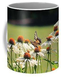 Butterfly On Echinacea Coffee Mug