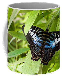 Coffee Mug featuring the photograph Butterfly On Leaf   by Lars Lentz