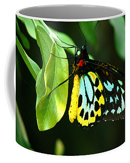 Butterfly On Leaf Coffee Mug by Laurel Powell