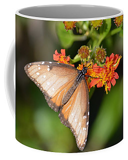 Coffee Mug featuring the photograph Butterfly On Mexican Flame by Debra Martz