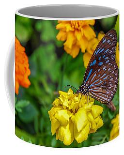 Butterfly On Yellow Marigold Coffee Mug
