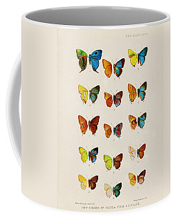 Butterfly Plate Coffee Mug