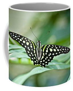 Butterfly Resting Color Coffee Mug