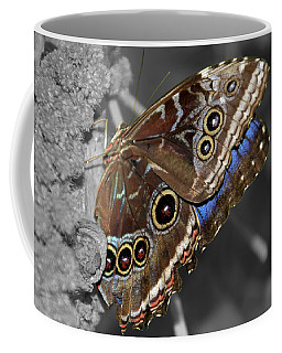 Butterfly Spot Color 1 Coffee Mug