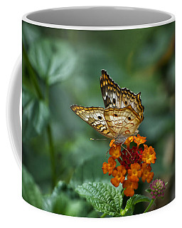 Coffee Mug featuring the photograph Butterfly Wings Of Sun Light by Thomas Woolworth