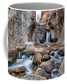 Buttermilks Waterfall Coffee Mug