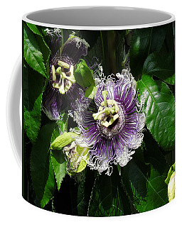 Coffee Mug featuring the photograph Byron Beauty by Ron Davidson