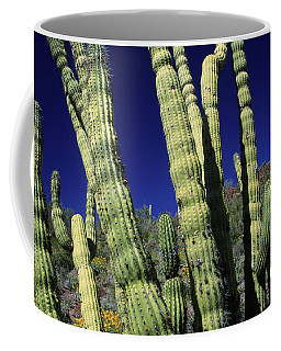 Cacti, Az Usa Coffee Mug