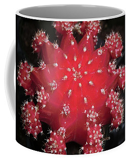 Cactus Beauty  Coffee Mug