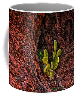 Cactus Dwelling Coffee Mug
