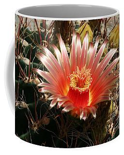 Cactus Volcano #2 Coffee Mug
