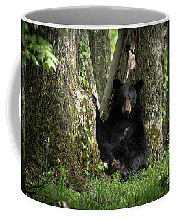 Cades Cove Bear Coffee Mug
