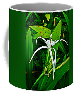 Cahaba Lily In A Park In Siem Reap-cambodia  Coffee Mug