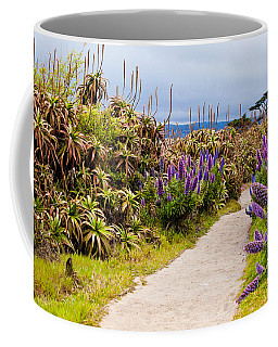 California Coastline Path Coffee Mug