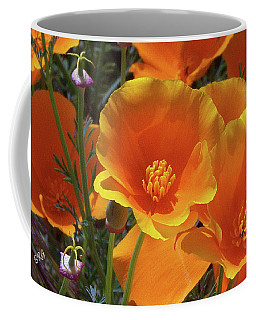 California Poppies Coffee Mug by Ben and Raisa Gertsberg
