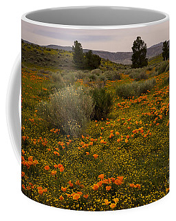 California Poppies In The Antelope Valley Coffee Mug by Nina Prommer