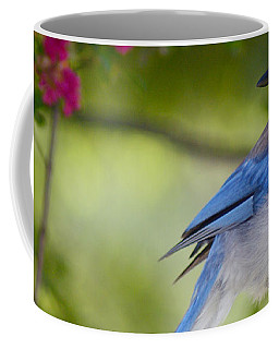 California  Scrub Jay Coffee Mug