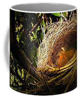 California Towhee Newborns Coffee Mug