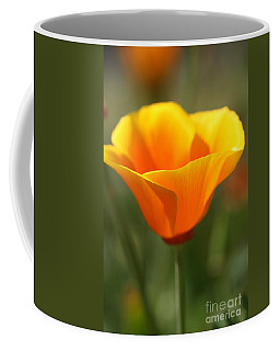 Coffee Mug featuring the photograph Californian Poppy by Joy Watson