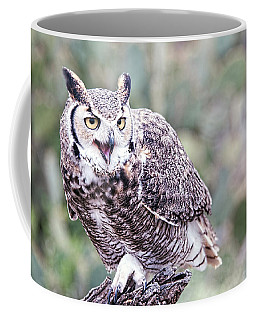 Coffee Mug featuring the photograph Call Of The Owl by Dan McManus