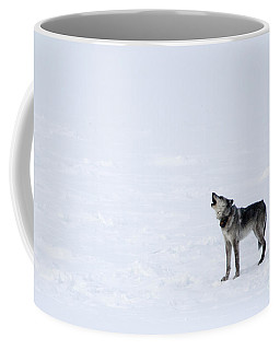 Calling Home Coffee Mug