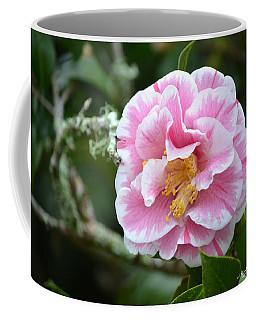 Camellia Japonica Pink Coffee Mug
