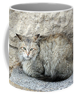 Camo Cat Coffee Mug