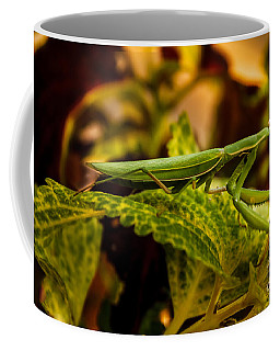 Camouflage Special Coffee Mug