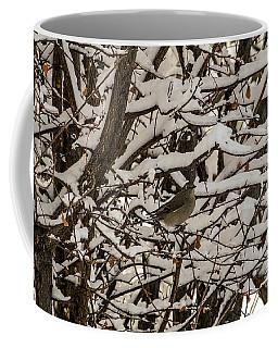 Camouflaged Thrush Coffee Mug