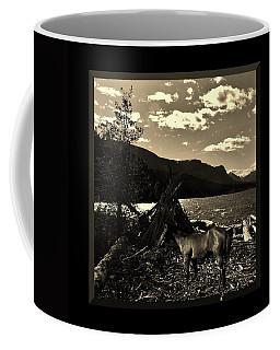 Camp Site Coffee Mug