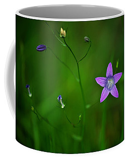 Campanula Patula Coffee Mug