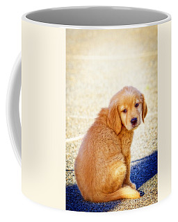 Can I Play Too Coffee Mug