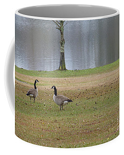 Canadian Geese Tourists Coffee Mug