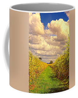 Coffee Mug featuring the photograph Cane Fields by Wallaroo Images