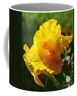 Canna Beauty Coffee Mug