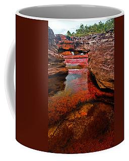 Cano Cristales Coffee Mug