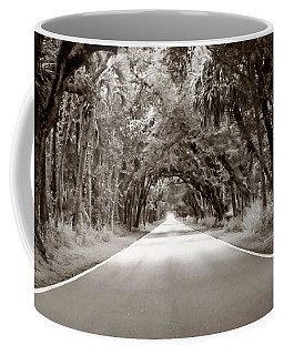 Canopy Of Trees Coffee Mug