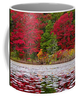 Coffee Mug featuring the photograph Cape Cod Autumn by Dianne Cowen