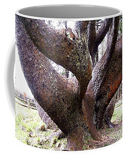 Cape Meares Octopus Tree Coffee Mug by Peter Mooyman