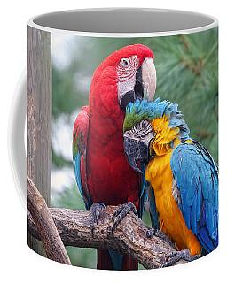 Grooming Session Coffee Mug